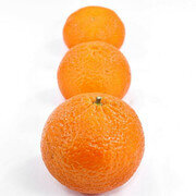 Naranja Valencia X 1 Libra