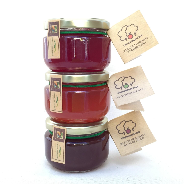 Conjunto de jaleas artesanales de fruta ecológica
