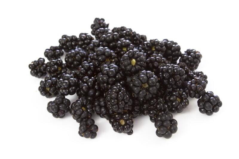 פטל בוייסנברי boysenberry