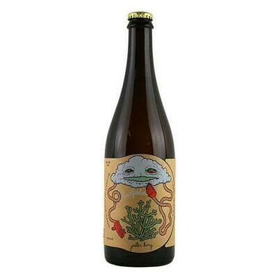 Jester King x Tired Hands Cloud Feeder IPA