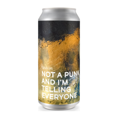 Boundary Not A Punk And I'm Telling Everyone Sour IPA