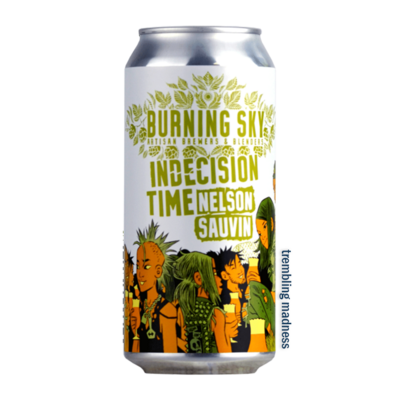 Burning Sky Indecision Time Nelson Sauvin Pale Ale