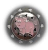 Pig Strainer
