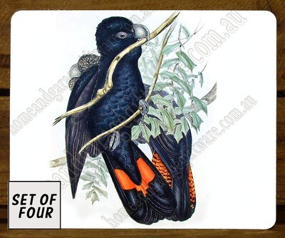 SET OF 4 PLACEMATS - JOHN GOULD -WESTERN BLACK COCKATOO