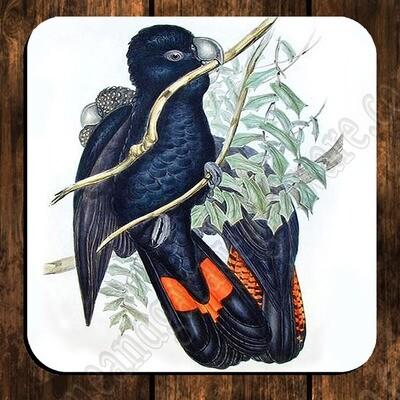 Coaster - Western Black Cockatoo - John Gould