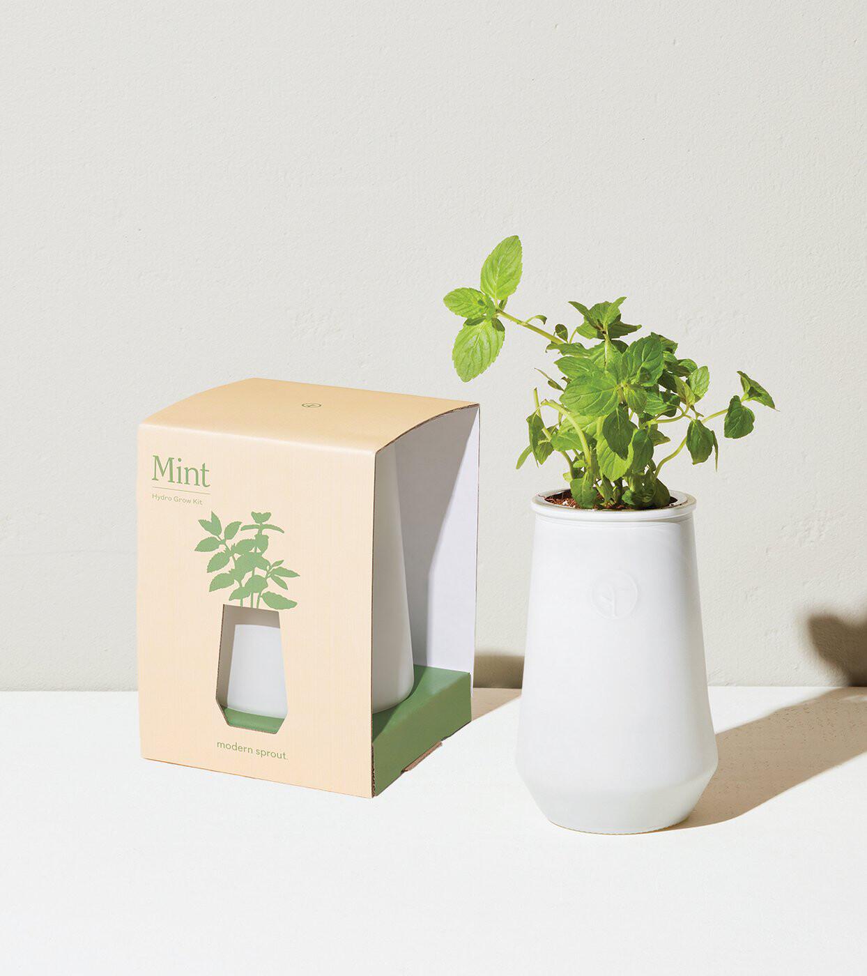 Hydro Grow Kit