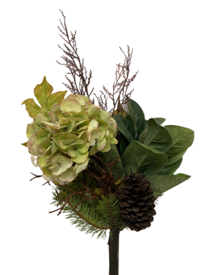 """31"""" Hydr/Magnolia Lf/Cone"""