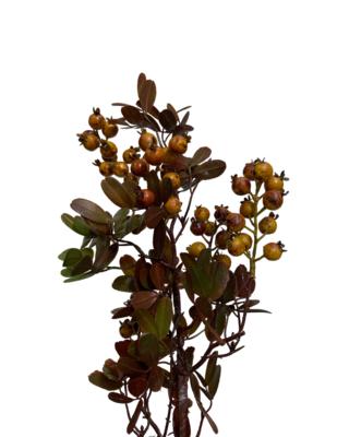 """22"""" Berry Leaf Spray TN"""
