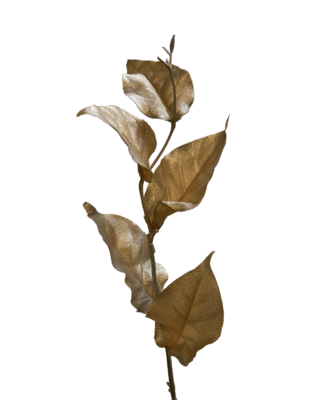 "22.5"" Charisma Lemon Leaf"