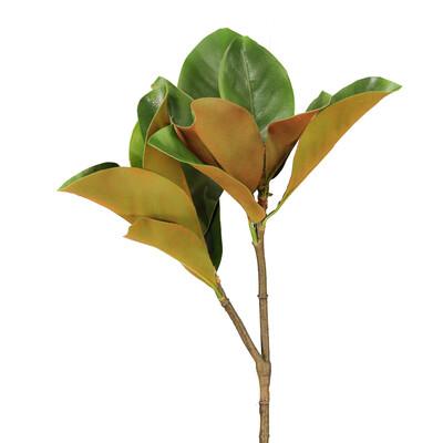 """26"""" Magnolia Leaf Spray"""