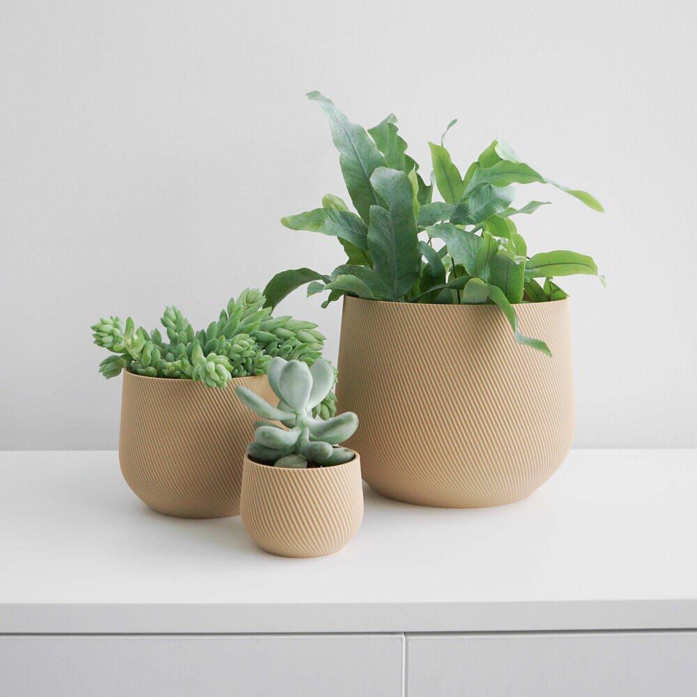 Juniper Planter