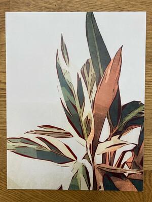 Triostar Print 2