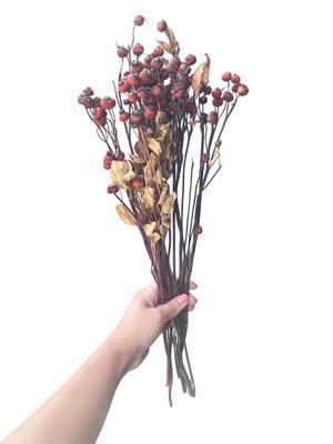 "Rosehips Natural 18"""