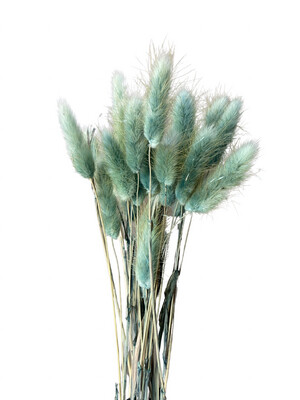 Dried Bunny Tails - Peacock Blue