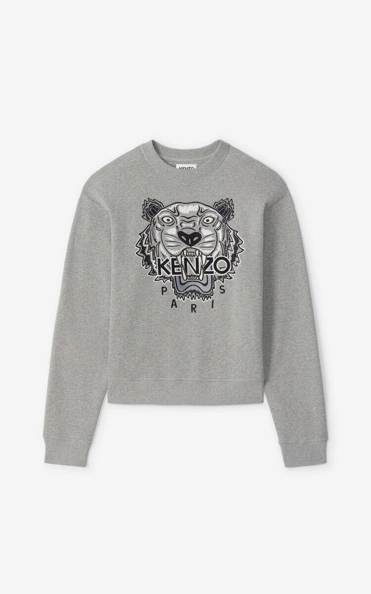 Kenzo | Sweater | FA65SW1114XV grijs