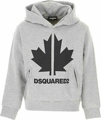 Dsquared2 Kids | Hoodie | DQ049C D00J8 D2S383U grijs