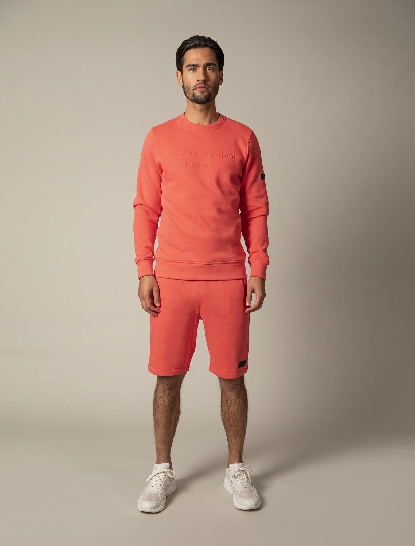 Cavallaro   Sweater   120211003 coraal