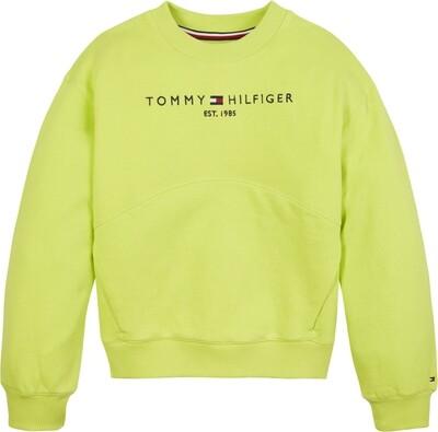 Tommy Hilfiger Kids   Sweater   KG0KG05764 groen
