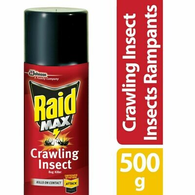 Raid Max Ant, Roach, Earwig and Crawling Insect Killer Spray, 500g