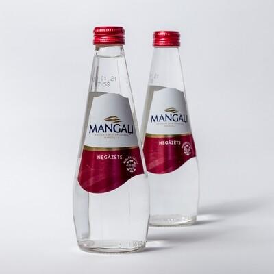 MANGAĻI NEGĀZĒTS ŪDENS 0,33l