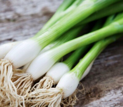 OUR OWN - Scallion Bunch
