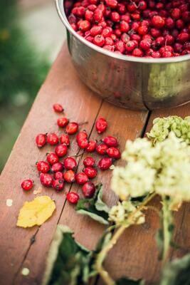 Frozen Cranberries - 2 lb. Bag