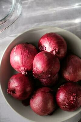 Red Onion - Pack of 4