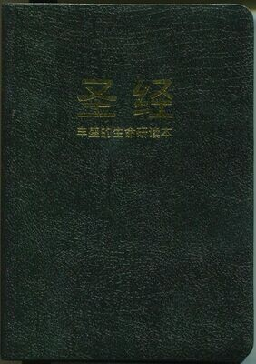 Chinese Simplified Black Bonded Leather