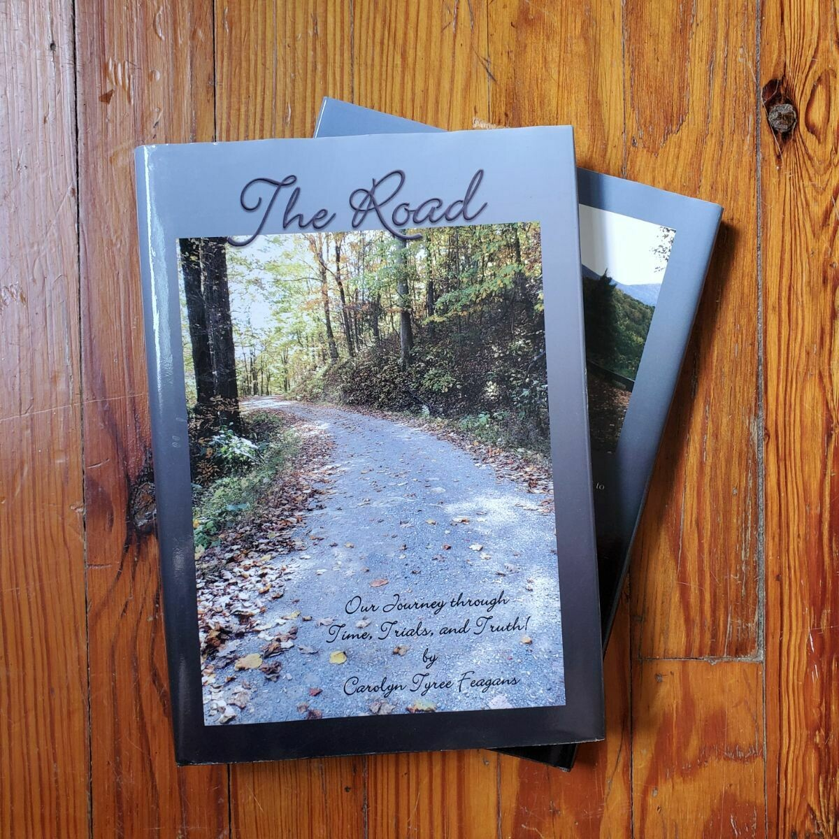 The Road by: Carolyn Tyree Feagens