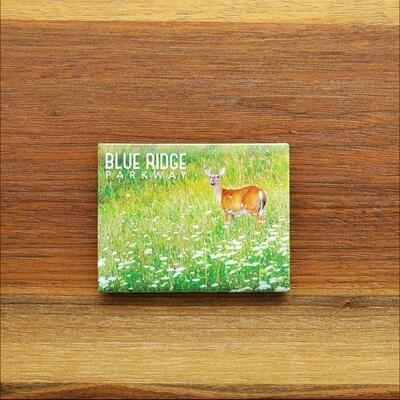 Blue Ridge Parkway Deer Magnet