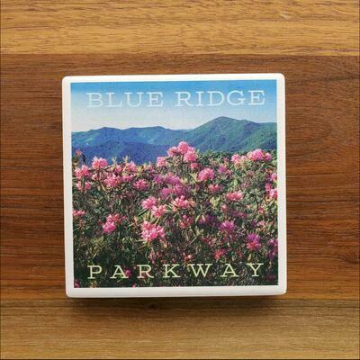 Blue Ridge Parkway Rhododendron Ceramic Coaster