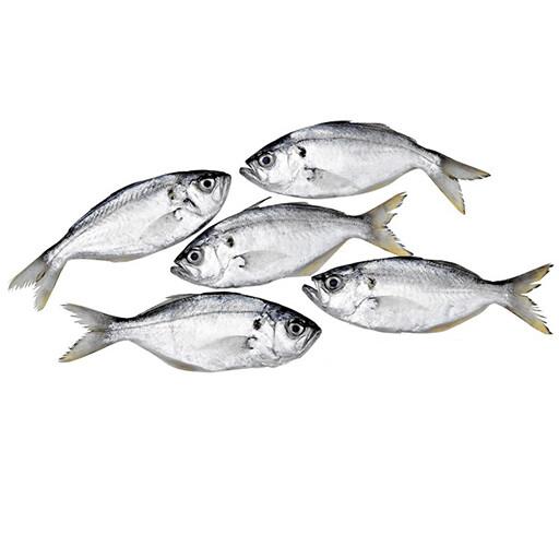 WHITE FISH PARAVA /ADU (Per kg)