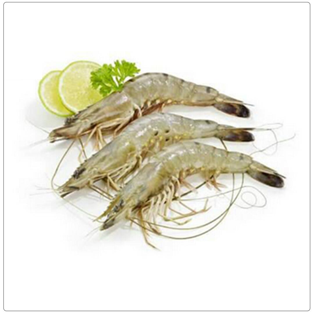 Shrimp Medium(Per Kg)