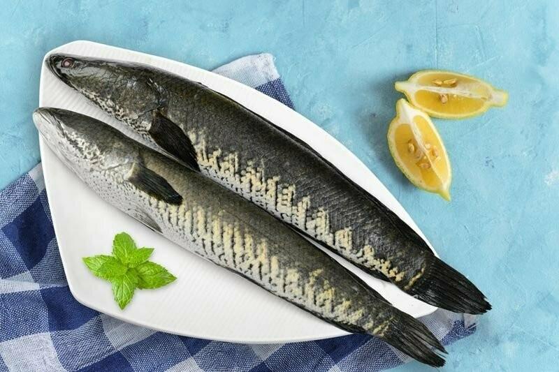 VARAAL FISH