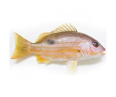 NAISER FISH(PER KG)