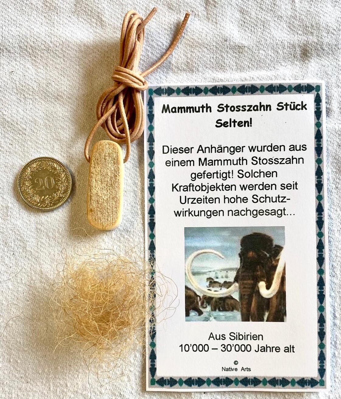 Stück Mammuth Stosszahn  Selten!