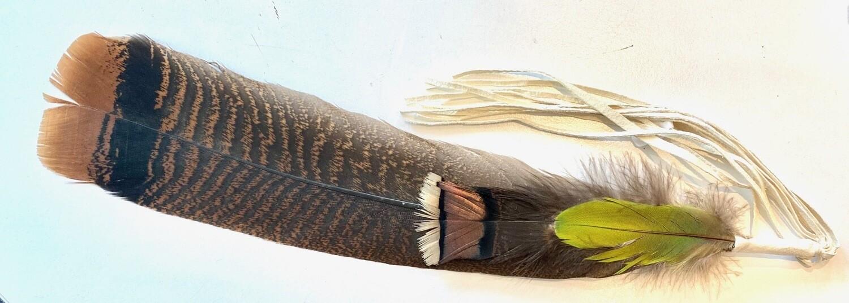 Räucherfeder Truthahn