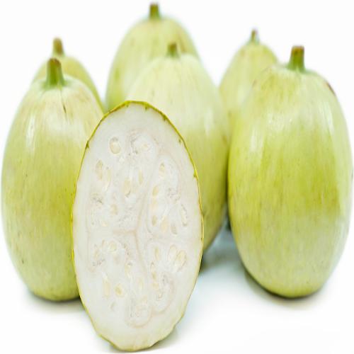 Round Gourd Seeds (5 seeds)