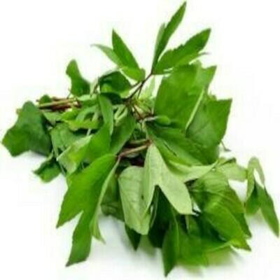 Gongura (Roselle) Seeds (10 seeds)