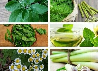 Ayurvedic Immunity Booster Seeds Pack