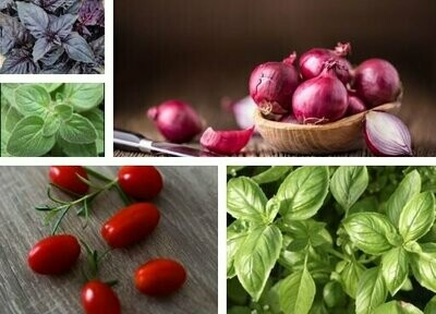 Cherry Tomato & Basil Pizza Seeds Pack