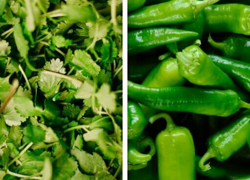 Dhania Mirchi Seeds Pack