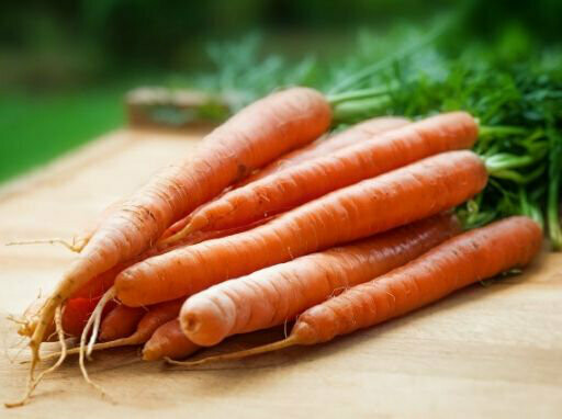 Carrot Seeds (10 seeds)