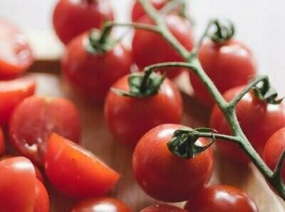 Cherry Tomato (10 seeds)