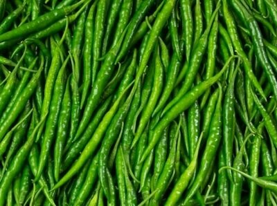 Chili Long Green Seeds (10 seeds)