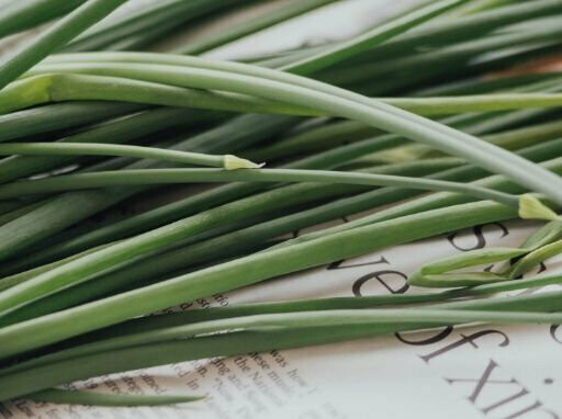 Lemon Grass Seeds (20 seeds)