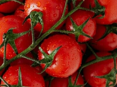 Round Tomato Seeds (10 seeds)