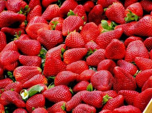 Strawberry Seeds(5 Seeds)