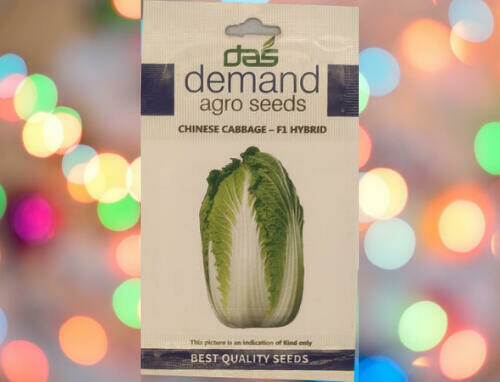 Demand Agro Chinese Cabbage F1 Hybrid