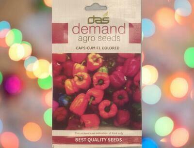 Demand Agro Capsicum F1 Coloured